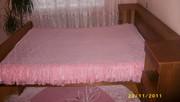 Спалня медуница